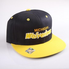 Snapback Michigan University